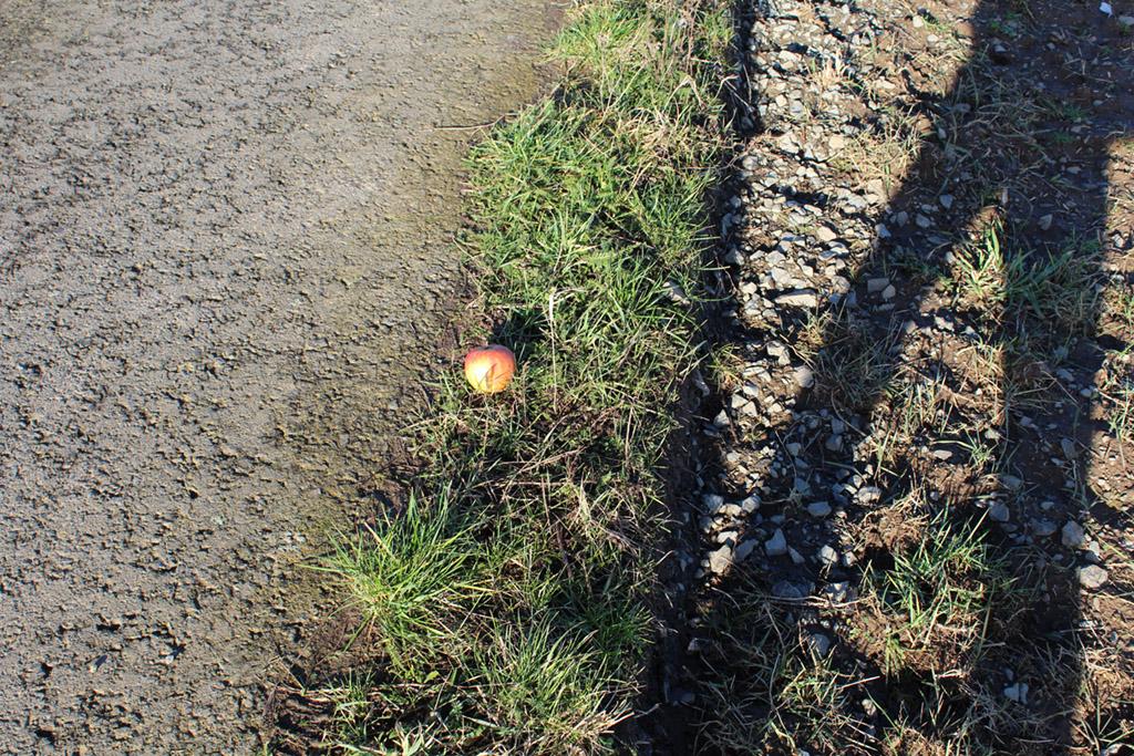 """Grenzabstand beim Pflügen: """"drei äpfelbreit"""""""